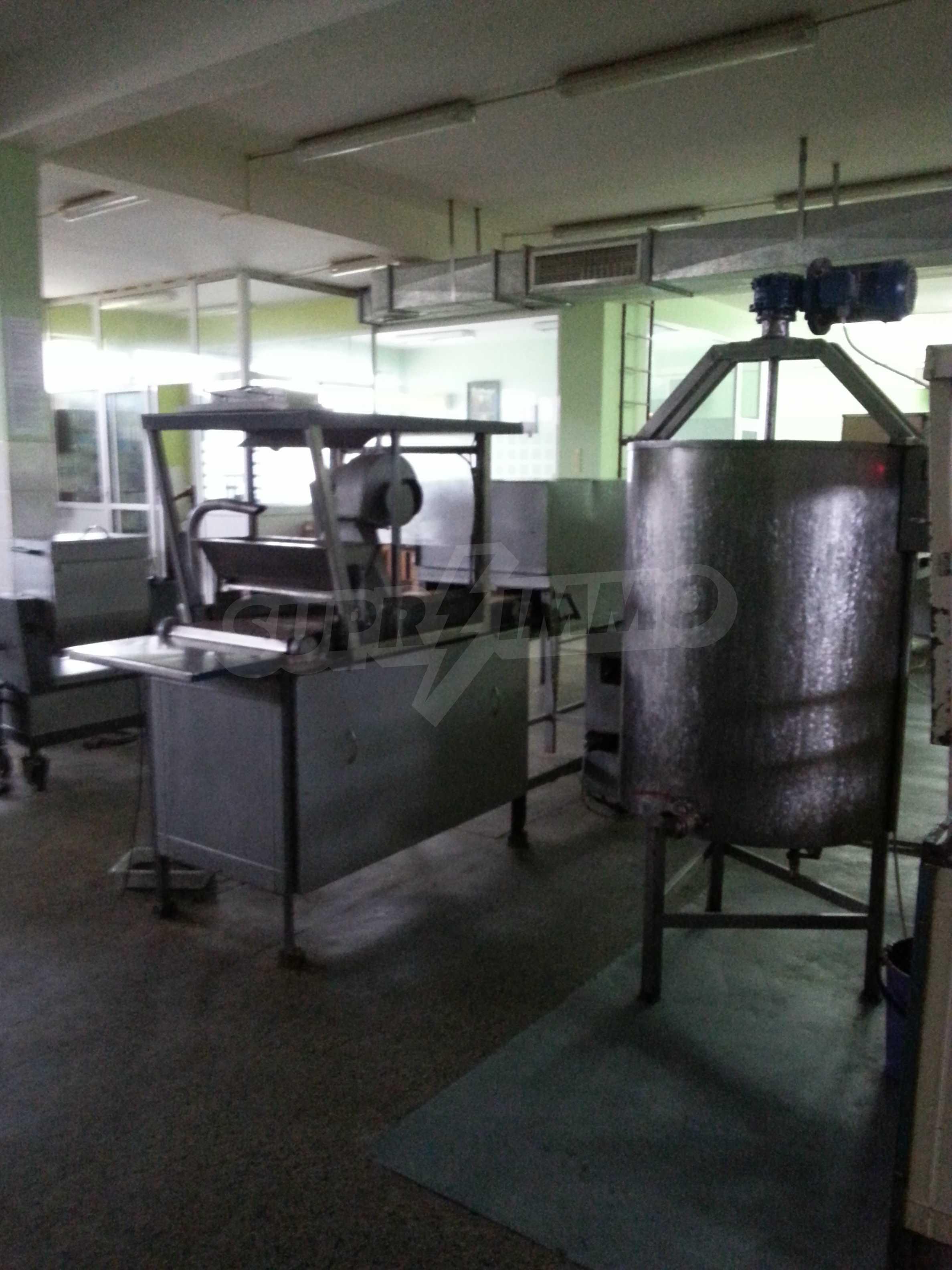 Работеща фабрика за производство на захарни изделия 10