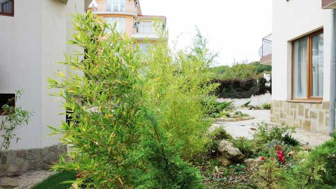 2-Raum-Apartment im Komplex Melodi in Sweti Wlas 27