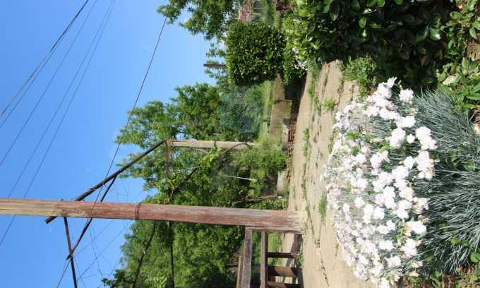12 km von der Stadt Veliko Tarnovo entferntes renoviertes Haus 46