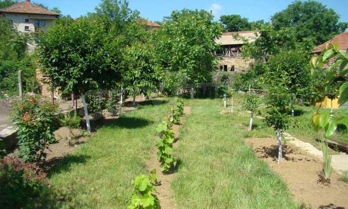 Breites Haus mit Garten in der Nähe von Widin 4
