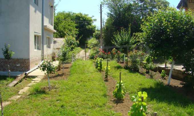 Breites Haus mit Garten in der Nähe von Widin 5