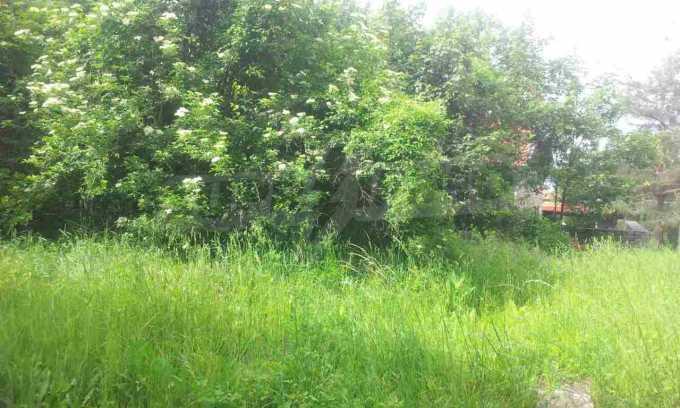УПИ с целогодишен достъп в зелената част на Бистрица