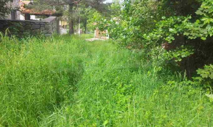 УПИ с целогодишен достъп в зелената част на Бистрица 2