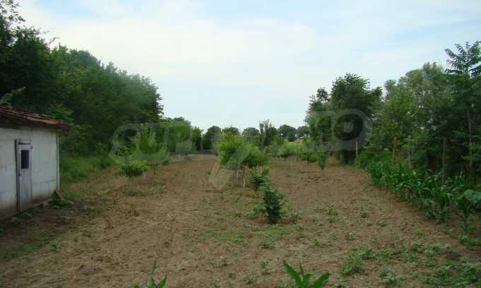 Земеделска земя с голяма овощна градина в близост до Видин 2