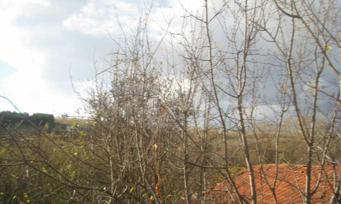 Къща за продажба близо до Кюстендил 35