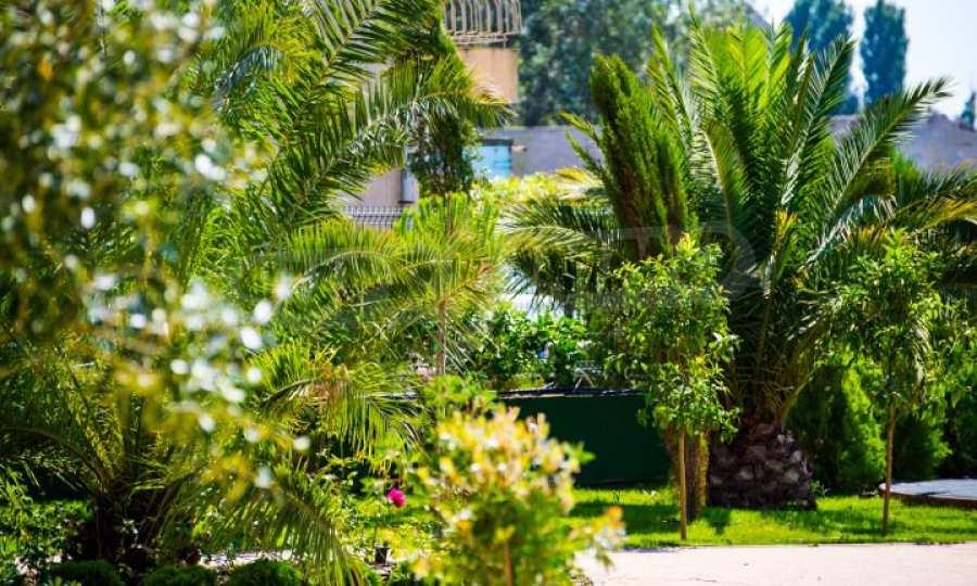Letzte freie Apartments im Luxuskomplex Messembria Palace 31